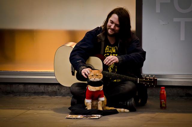 a-street-cat-named-bob-guitar